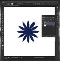Adobe Photoshop CS6 | Shape Layer
